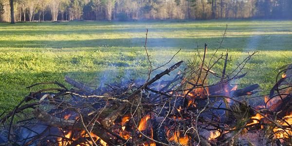 Image of sticks burning
