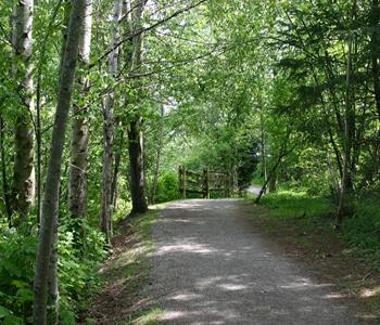Image of Fishtrap Creek Trail