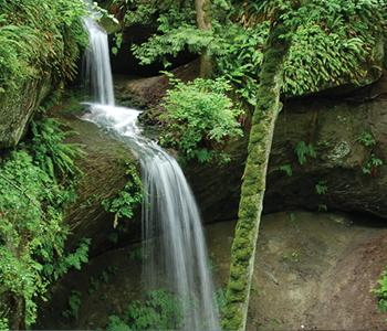 Image of Bassani Trail Waterfall