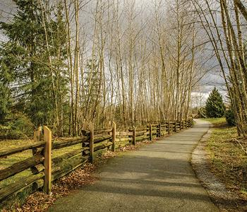 Image of Clearbrook Park Trail