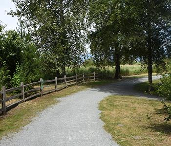 Image of Willband Creek Trail